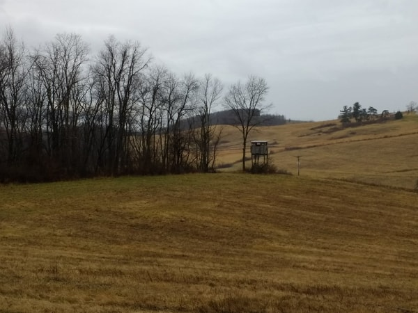 Hunting Stand in dormant hay field